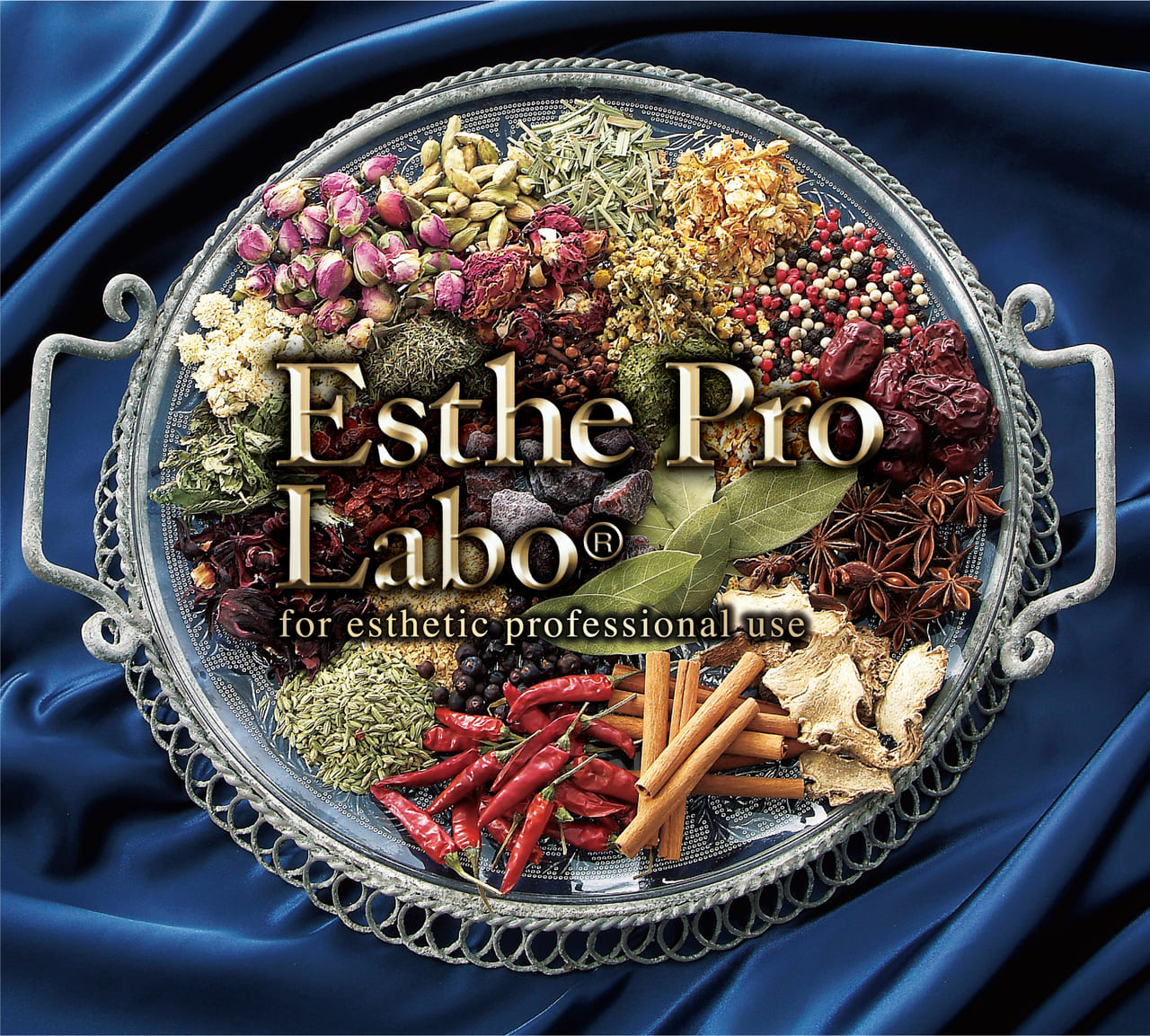 エステプロ・ラボのロゴ
